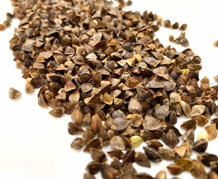 成熟的荞麦种子随时可以变成食物或用来种植下一季的荞麦。
