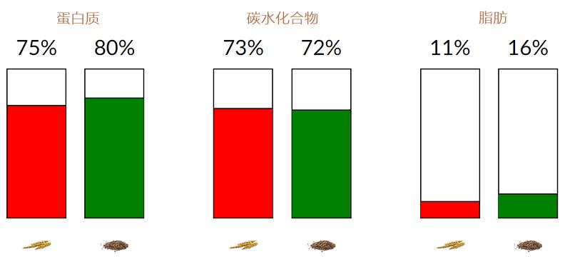 大麦和荞麦的营养素含量比较