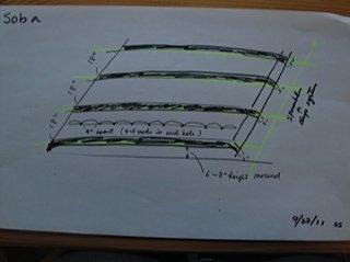 荞麦地规划布局图